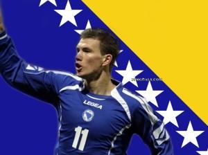 Bosian flag