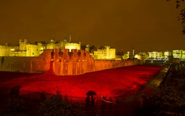 Poppies Tower of London night